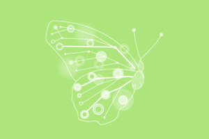 Advance Career Butterfly